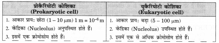 NCERT Solutions for Class 9 Science Chapter 5 (Hindi Medium) 3