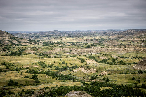Theodore Roosevelt National Park-010