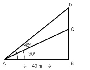 RS Aggarwal Solutions Class 10 Chapter 14 Height and Distance Ex 14a 10