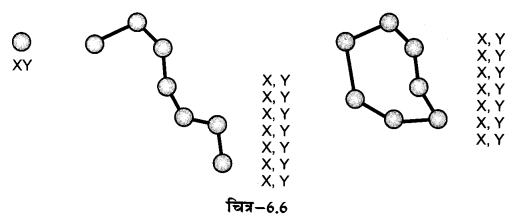 NCERT Solutions for Class 12 Geography Practical Work in Geography Chapter 6 (Hindi Medium) 3.1
