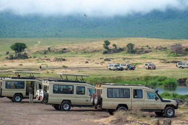 Safari cars at the hippo pool