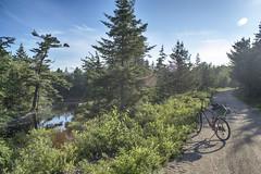 The Aspotogan Trail