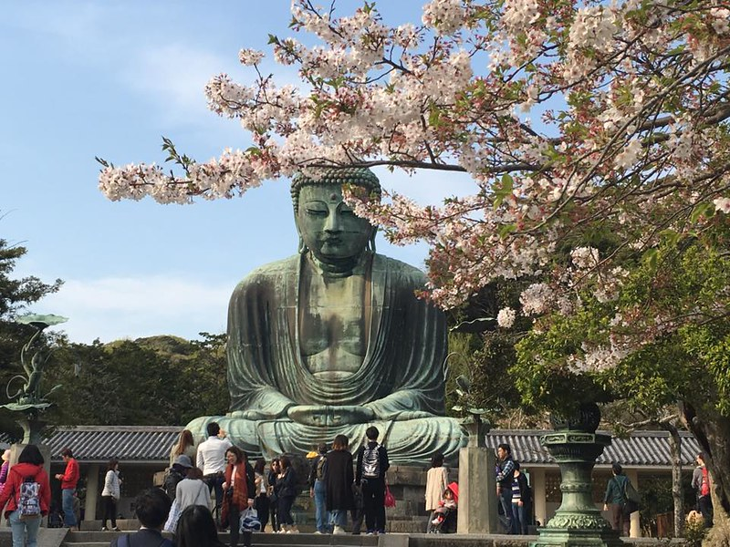 Buddha with the blossoms