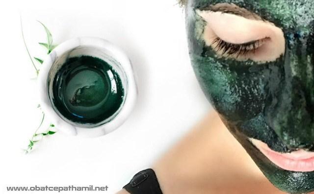Harga Masker Spirulina Di Apotik