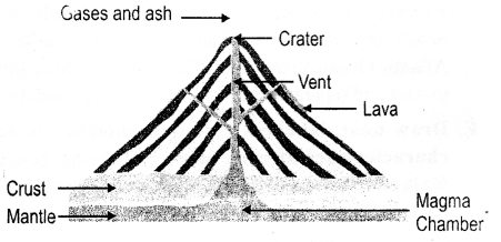 ICSE Solutions for Class 6 Geography Voyage - Major Landforms of the Earth 11.1