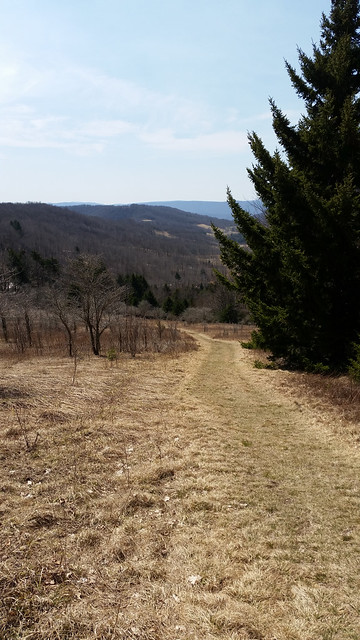 20180413_Canaan_Valley_SP_076
