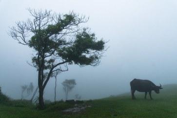 Lust-4-Life lustforlife travel blog reiseblog taiwan taipei taipeh-36