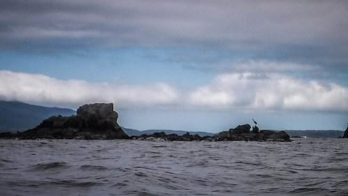 Solstice Selfie Paddle on Bellingham Bay-25