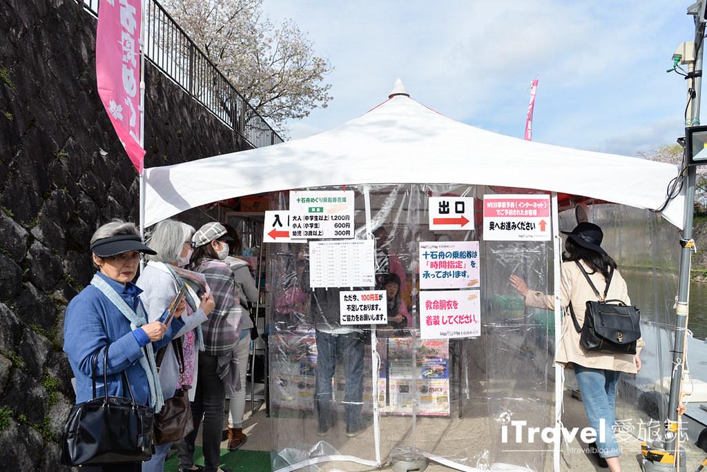 京都赏樱景点 冈崎疏水道 (5)
