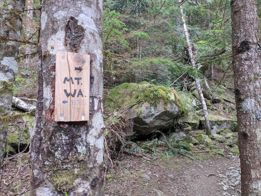 Mount Washington hike
