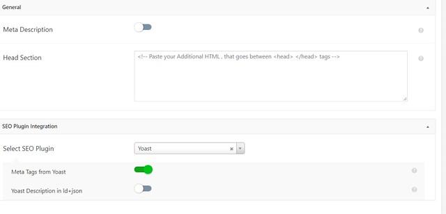 amp wordpress option