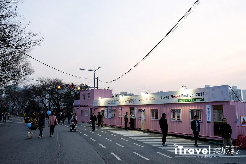 首爾賞櫻景點 汝矣島 (23)