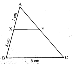 rd-sharma-class-10-solutions-chapter-7-triangles-ex-7-5-3