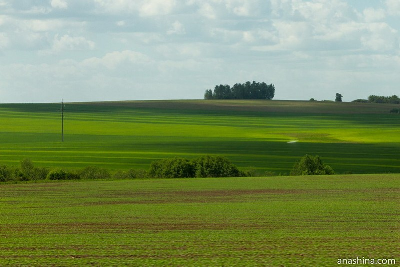 Владимирское ополье близ Юрьева-Польского