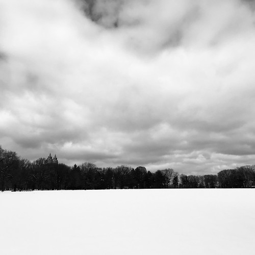 Snowy Great Lawn by DJ Lanphier