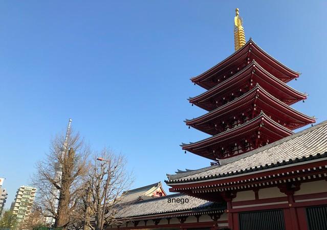 浅草寺 五重の塔