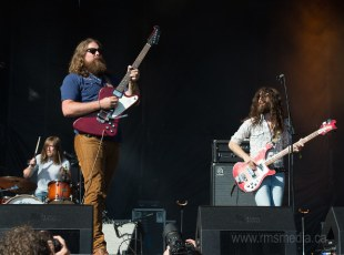 resized_RTS-2013-The-Sheepdogs21