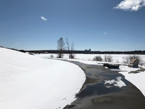Owen Sound - Sunny day on the snowy trail
