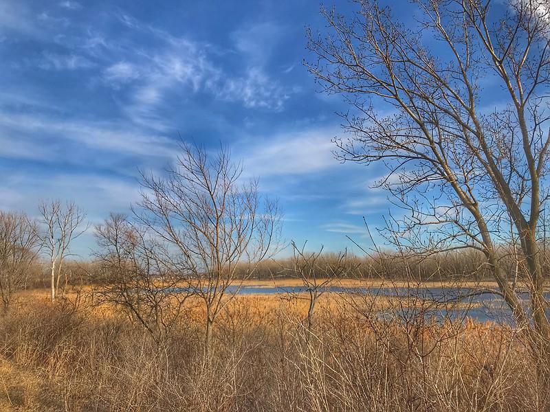 Hegewisch Marsh