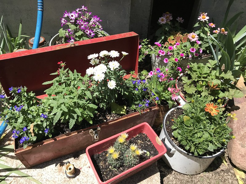 traveling garden