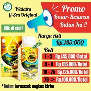 Jelly Gamat Super Murah Cuma Rp 100.000,-