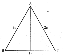 rd-sharma-class-10-solutions-chapter-7-triangles-ex-7-7-13