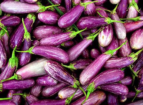 Aubergine Berenjena Berinjela Eggplant Melanzana