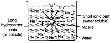 ncert-solutions-for-class-10-science-chapter-4-carbon-and-its-compounds-15