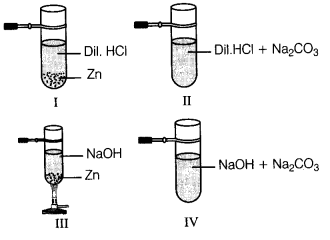 acids-bases-and-salts-cbse-class-10-science-ncert-solutions-3