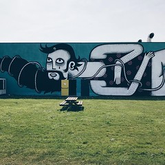 #streetart #thechrystalship #art #wall #colours #oostende #ostend #visitoostende #wanderlust #streetartistry #vsco #vscocam #guardiantravelsnaps #lonelyplanet #grass