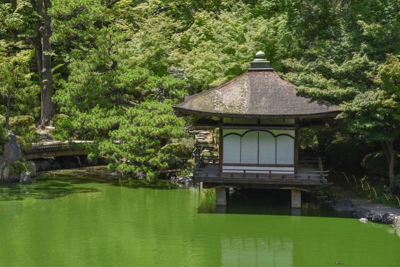 momijidani gardens