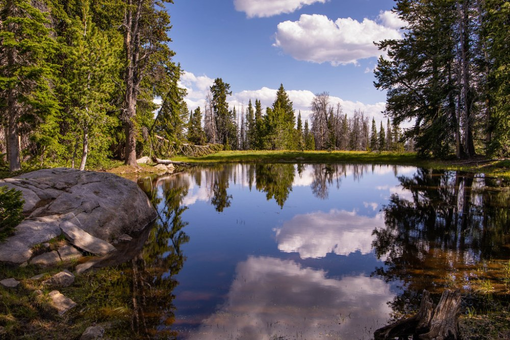 07.04. Wind River: Photographer's Point