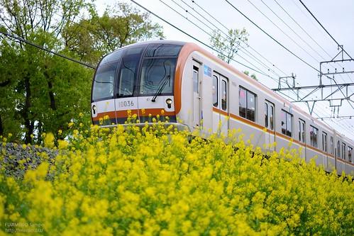 地下鉄副都心線 20180416-DSCT1141 (2)