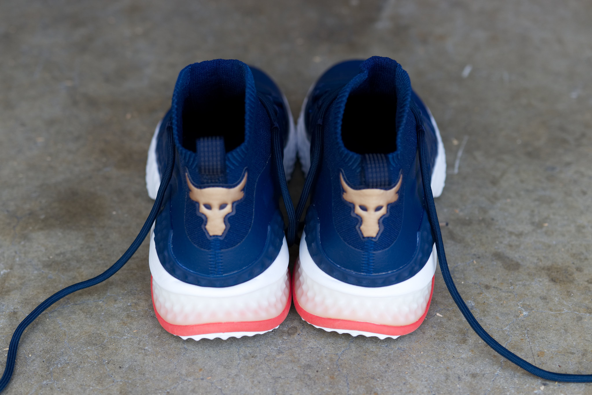 Under Armour Project Rock 1 Training