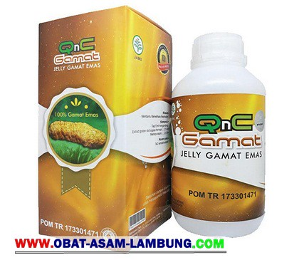 www.obat-asam-lambung.com
