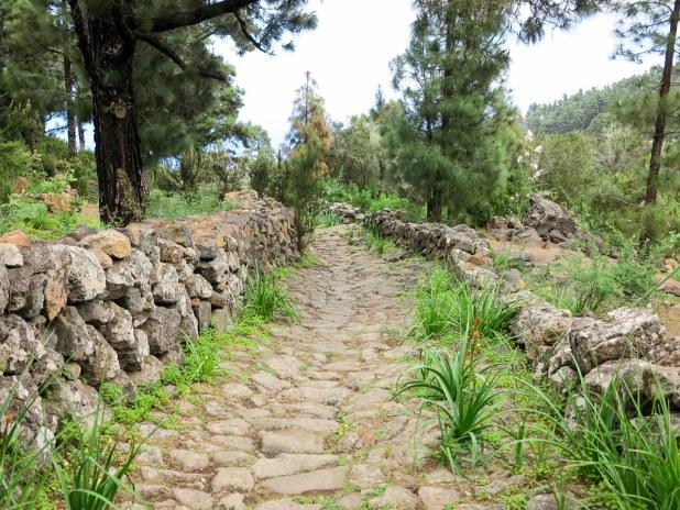 Sendero Real en Tenerife