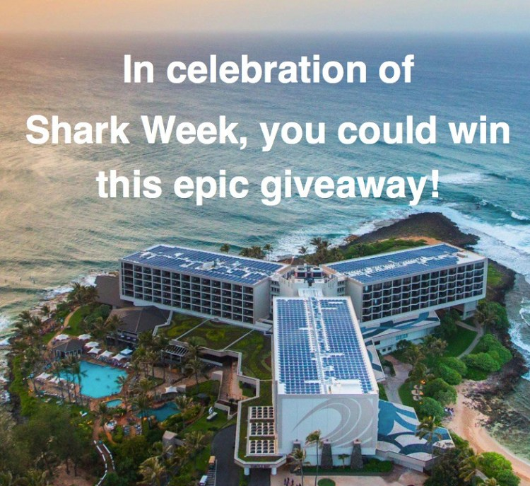Win Four Nights In Hawaii From Journy!