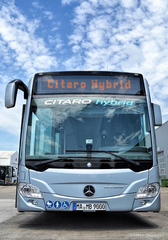 MB Citaro Hybrid (4-1)