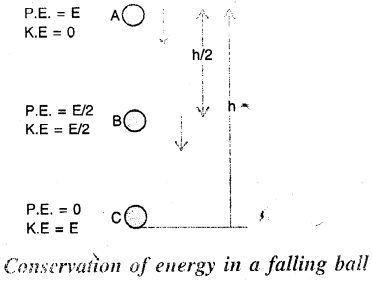 Selina Concise Physics Class 7 ICSE Solutions - Energy 11