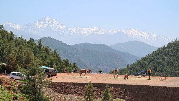 Camino al valle de Ourika