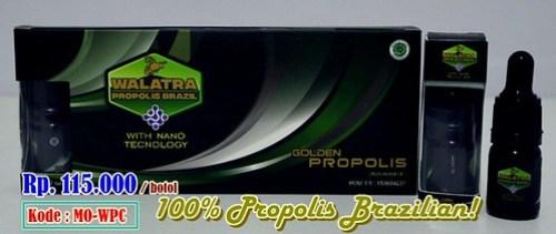 Harga Propolis Brazil di Apotik