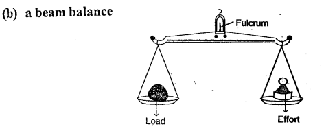 Selina Concise Physics Class 6 ICSE Solutions - Simple Machines 12.1