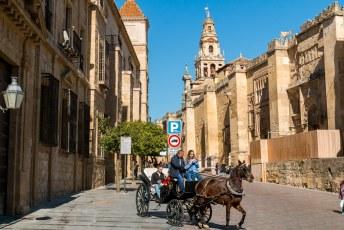 De stad en dus ook de kathedraal zijn in het verleden afwisselend in handen geweest van de moslims en de christenen.