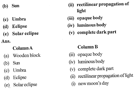 Selina Concise Physics Class 6 ICSE Solutions - Light 5.1