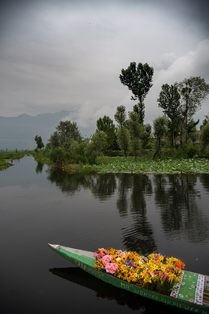 FloatingMarketDalLakeSrinagar_029