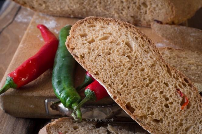 pane con paprika e peperoncino fresco - fetta orizzontale_