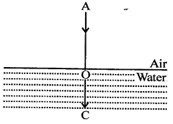 Selina Concise Physics Class 8 ICSE Solutions - Light energy 12.3