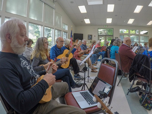Anacortes FUN Ukuleles-5