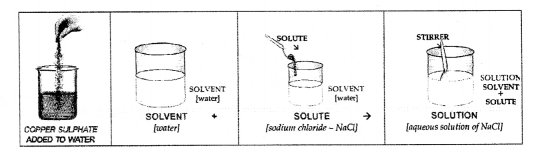 Selina Concise Chemistry Class 6 ICSE Solutions - Water 20