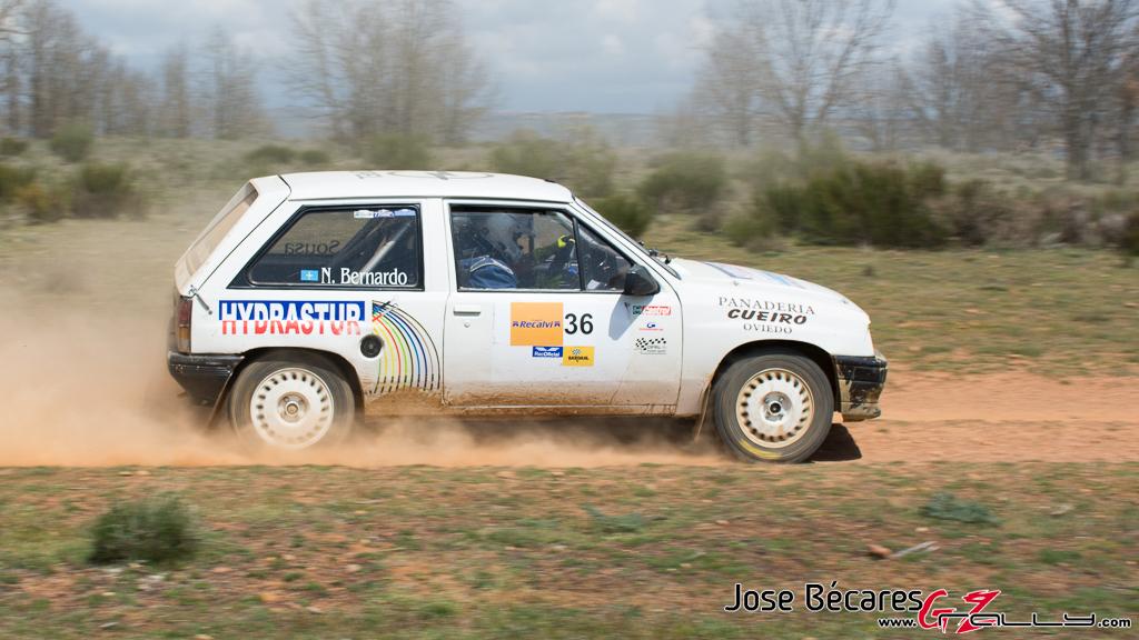 Jose Bécares_IV Rallysprint de tierra Guerrero competición_041